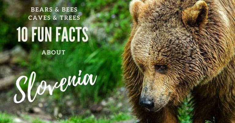 10 fun facts about slovenia