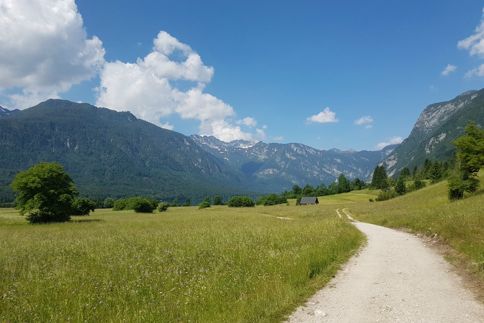 lake bohinj walk