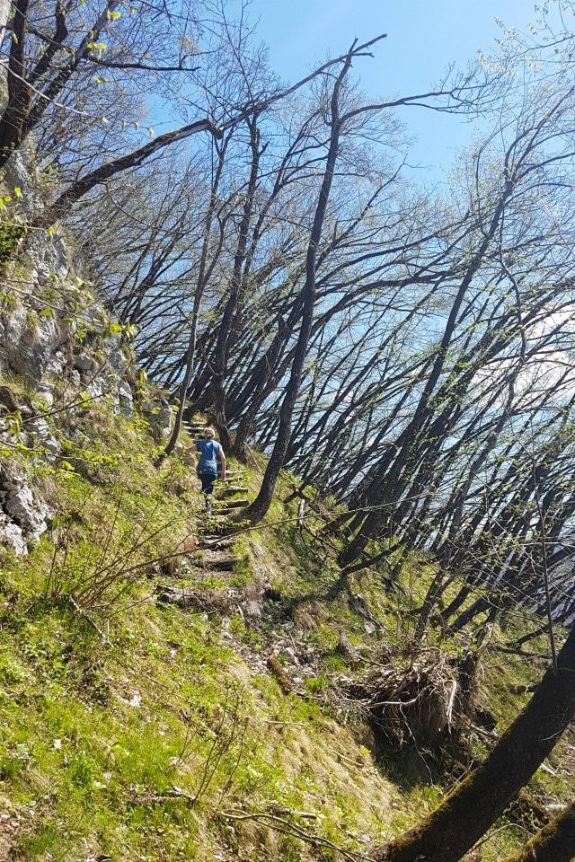studor hike bohinj slovenia