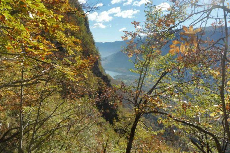 lake-bohinj-autumn