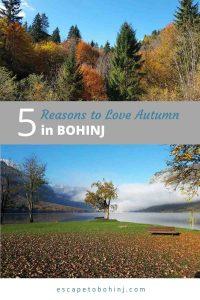 pinterest-autumn-in-bohinj