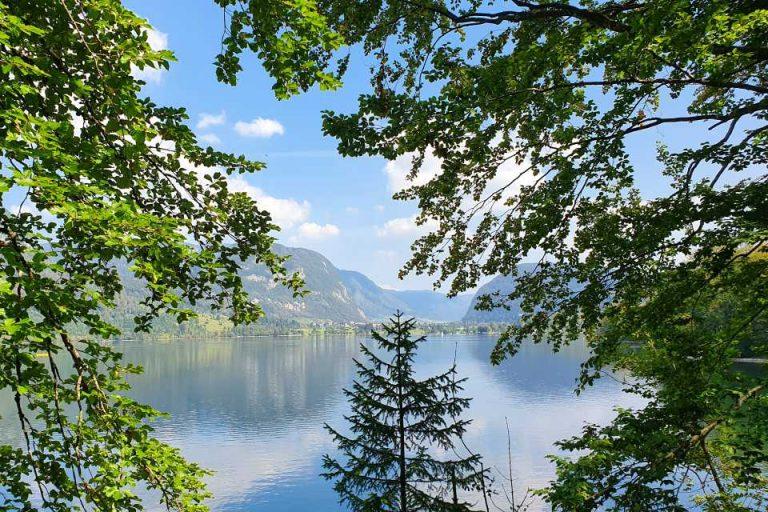 A walk around Lake Bohinj offers many stunning views