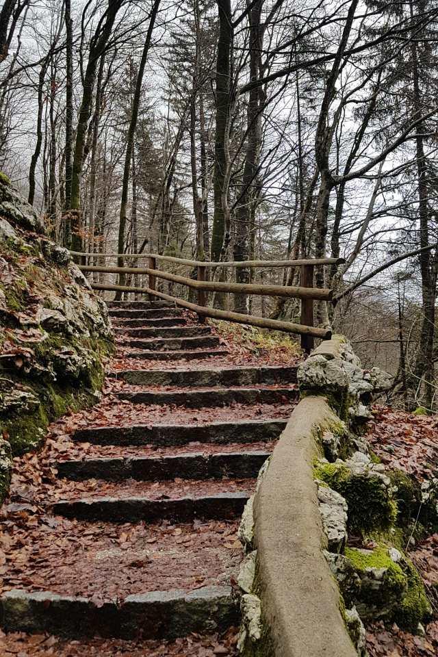 path-to-slap-savica