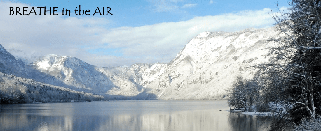 Lake Bohinj in winter with snow